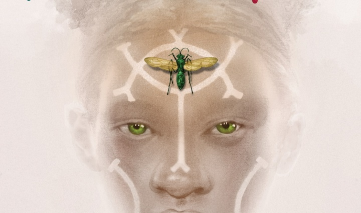 Nsibidi, young adult, fantasy
