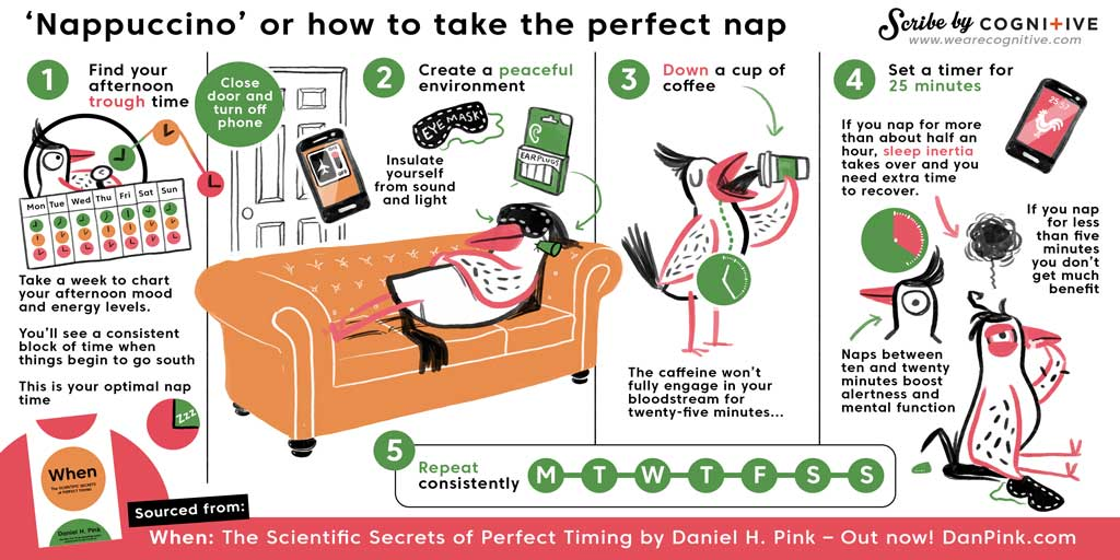 Infographic, danpink.com, nappucino, how to take the perfect nap, The scientific secrets of perfect timing